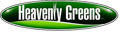 santa cruz artificial grass